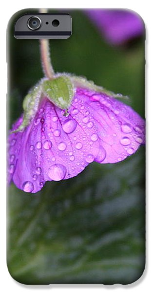 Lavender Pyrography iPhone Cases - Rain Kissed iPhone Case by Lynn-Marie Gildersleeve