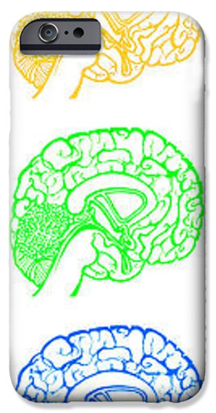 Thinking iPhone Cases - Rainbow Brains Extra Large iPhone Case by Beth Snow