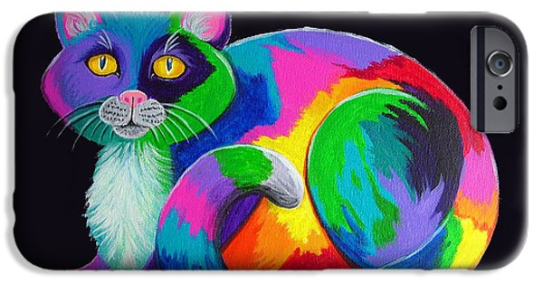 Bright Colors iPhone Cases - Rainbow Calico iPhone Case by Nick Gustafson