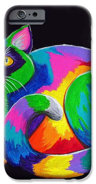 Rainbow Calico iPhone Case by Nick Gustafson