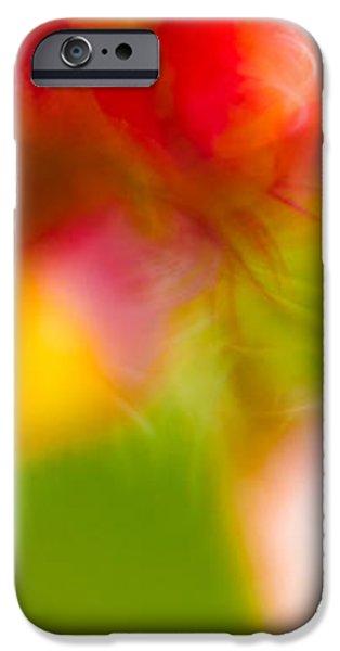 Rainbow Flower iPhone Case by Darryl Dalton