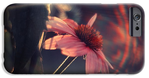 Echinacea iPhone Cases - Rainbow Flower iPhone Case by Magda  Bognar
