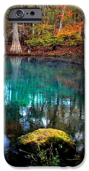 Chiefland iPhone Cases - Rainbow of Colors Manatee Springs1 iPhone Case by Sheri McLeroy