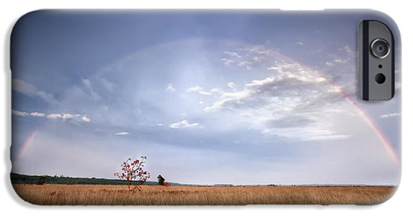 Recently Sold -  - Storm iPhone Cases - Rainbow Over Rowan Tree After Rain iPhone Case by Olha Rohulya