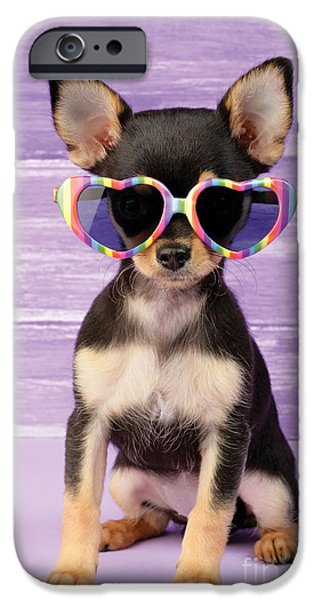 Puppy Digital Art iPhone Cases - Rainbow Sunglasses iPhone Case by Greg Cuddiford