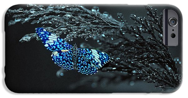 Rainy Day iPhone Cases - Raindrop Butterfly iPhone Case by Linda Mans