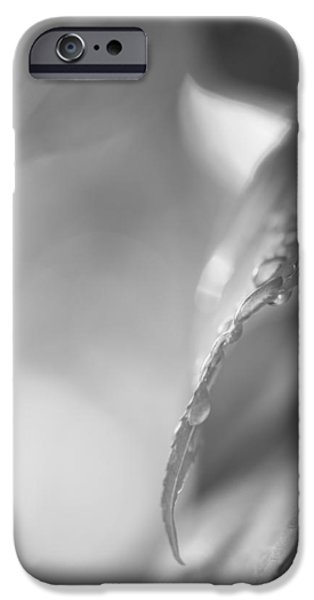 Raindrops Two iPhone Case by Bob Orsillo