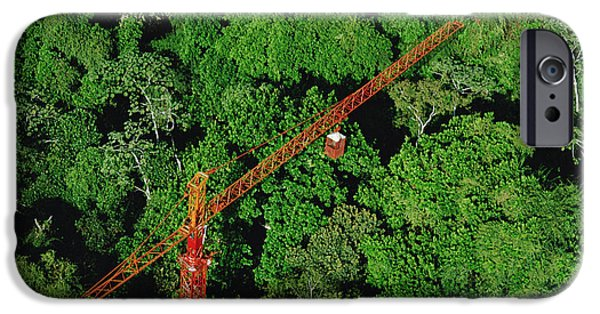 Smithsonian iPhone Cases - Rainforest Canopy Research Crane Stri iPhone Case by Mark Moffett