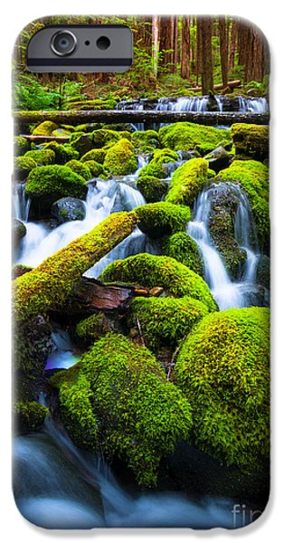 River View iPhone Cases - Rainforest Magic iPhone Case by Inge Johnsson