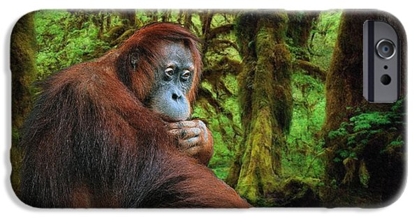 Orangutan Digital Art iPhone Cases - Rainforest Thoughts iPhone Case by Skye Ryan-Evans