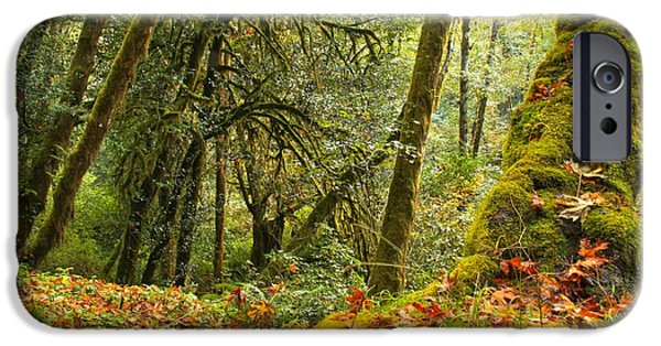 State Parks In Oregon iPhone Cases - Rainforest Trunk iPhone Case by Adam Jewell
