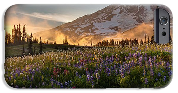 Meadow Photographs iPhone Cases - Rainier Golden Light Sunset Meadows iPhone Case by Mike Reid