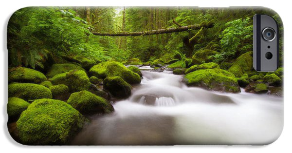 River iPhone Cases - Lush Rainier  iPhone Case by Dustin  LeFevre