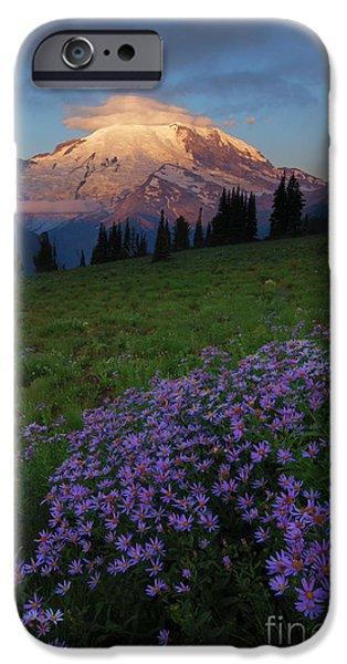 Mt Rainier iPhone Cases - Rainier Morning Cap iPhone Case by Mike  Dawson