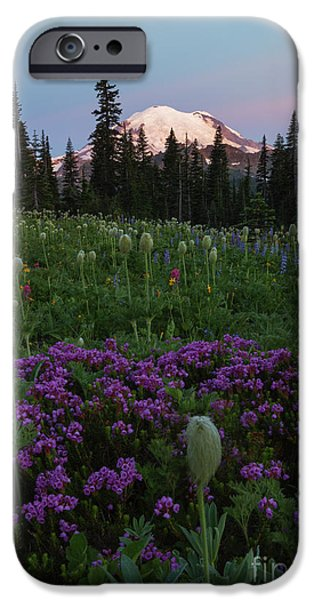 Mt Rainier iPhone Cases - Rainier Pastel Dawn iPhone Case by Mike  Dawson