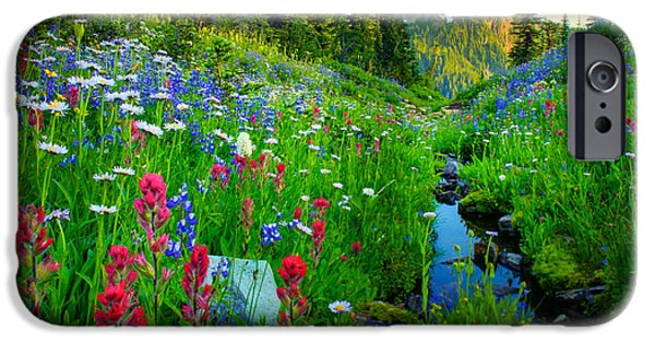 Flora Photographs iPhone Cases - Rainier Wildflower Creek iPhone Case by Inge Johnsson