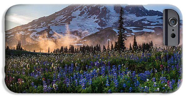 Meadow Photographs iPhone Cases - Rainier Wildflower Meadows Pano iPhone Case by Mike Reid