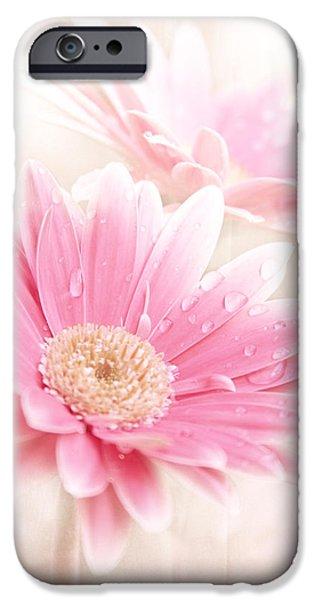Soft Colour iPhone Cases - Raining Petals iPhone Case by Sharon Mau