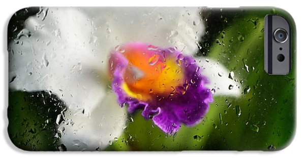 Business Photographs iPhone Cases - Rainy Day Orchid - Botanical Art By Sharon Cummings iPhone Case by Sharon Cummings