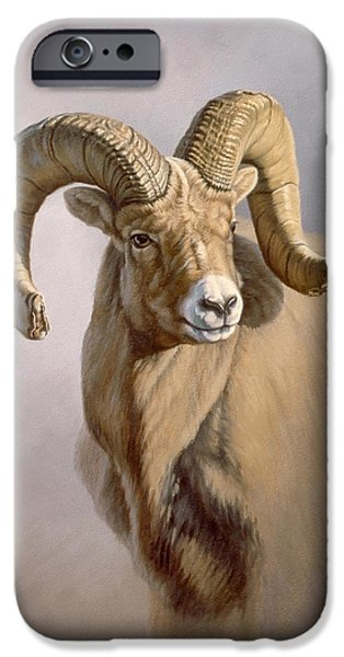 Sheep Paintings iPhone Cases - Ram Portrait iPhone Case by Paul Krapf