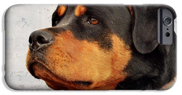 Black Dog Digital Art iPhone Cases - Ranch Dog on Watch iPhone Case by Kae Cheatham