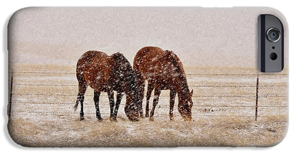 Snow Scene iPhone Cases - Ranch Horses in Snow iPhone Case by Kae Cheatham