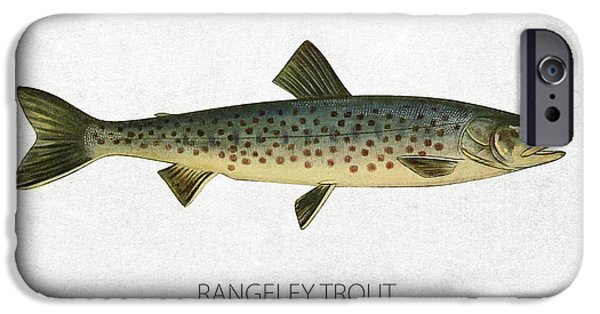 Fresh Water Fish iPhone Cases - Rangeley Trout iPhone Case by Aged Pixel