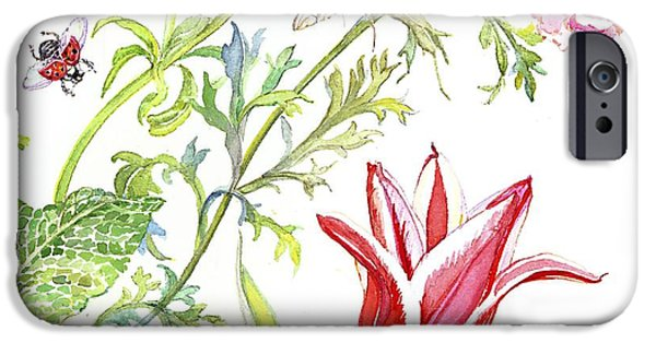 Signed Drawings iPhone Cases - Ranuncula and Tulip iPhone Case by Kimberly McSparran