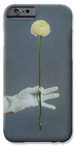 ranunculus iPhone Case by Joana Kruse