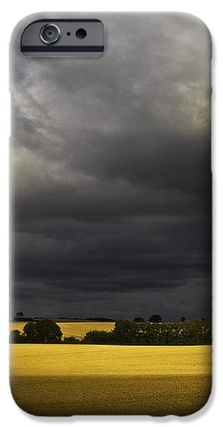 rapefield under dark sky iPhone Case by Heiko Koehrer-Wagner