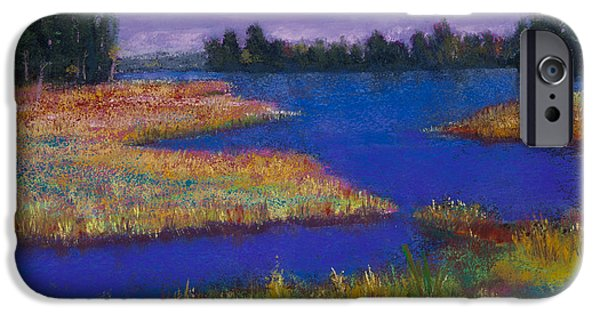 Fall Pastels iPhone Cases - Raquette Lake iPhone Case by David Patterson