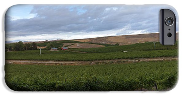 Vineyard Landscape iPhone Cases - Rattlesnake Ridge Agriculture iPhone Case by Mike  Dawson