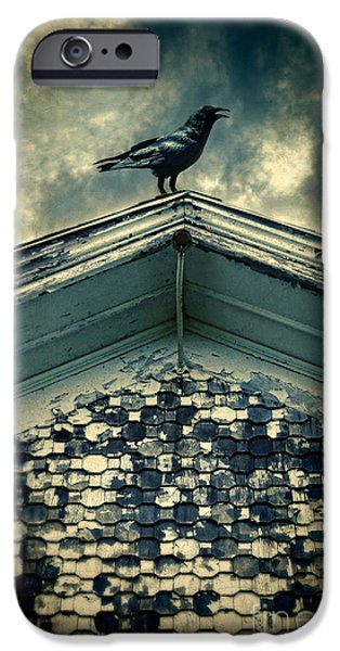 Eerie iPhone Cases - Raven on Roof iPhone Case by Jill Battaglia