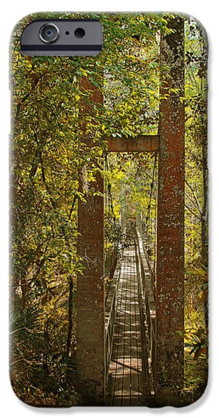 Nature Scene iPhone Cases - Ravine Gardens State Park in Palatka FL iPhone Case by Christine Till