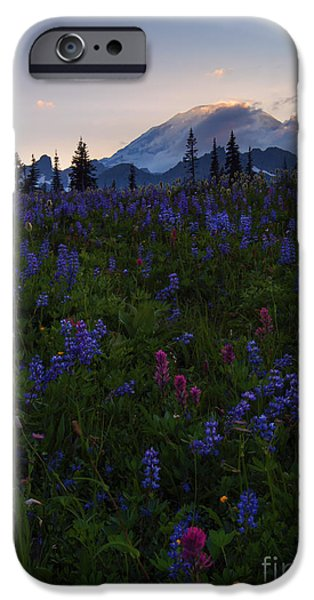Paintbrush Photographs iPhone Cases - Rays over Rainier iPhone Case by Mike  Dawson