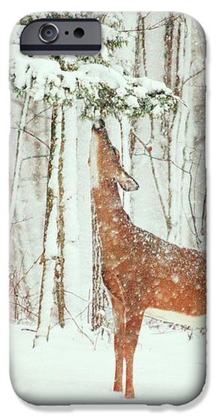 Reach For It Happy Holidays iPhone Case by Karol  Livote