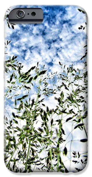 Weed Line iPhone Cases - Reach To The Sky iPhone Case by Marianna Mills
