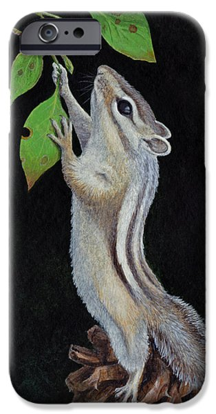 Chipmunk iPhone Cases - Reaching iPhone Case by Mike Stinnett