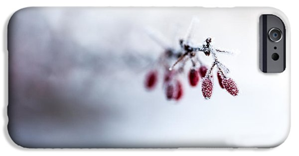 Frost Photographs iPhone Cases - Reaching Out iPhone Case by Aaron Aldrich