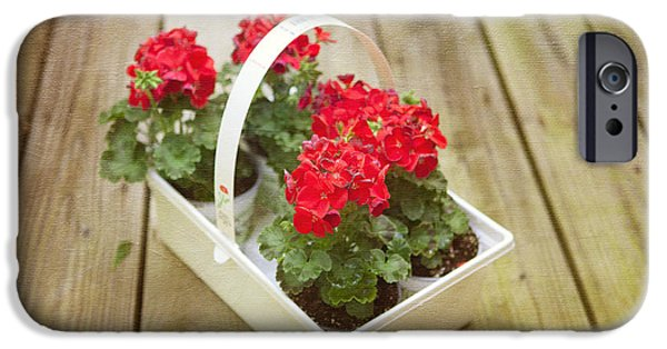 Red Geraniums iPhone Cases - Ready to Plant iPhone Case by Kay Pickens