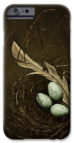 Nest iPhone Cases - Rebirth iPhone Case by Amy Weiss