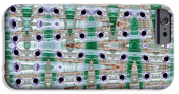 Celebrities Art iPhone Cases - Recondite Two iPhone Case by Sir Josef  Putsche