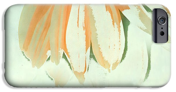 Abstracted Coneflowers iPhone Cases - Reconstructed Flower No.1 iPhone Case by Bonnie Bruno