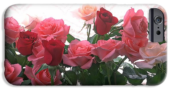 Love Laces iPhone Cases - Red and pink roses in window iPhone Case by Garry Gay