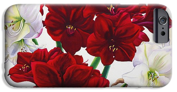 Floral Photographs iPhone Cases - Red And White Amaryllis, 2008 Wc On Paper iPhone Case by Christopher Ryland