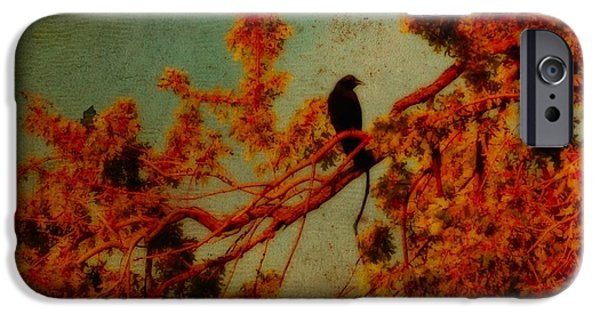 Photographs With Red. iPhone Cases - Red Autumn iPhone Case by Gothicolors Donna Snyder