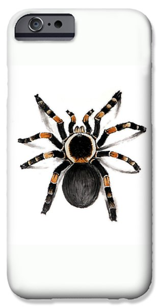 Creepy Ceramics iPhone Cases - Red Banded Tarantula iPhone Case by Nathan Ryan