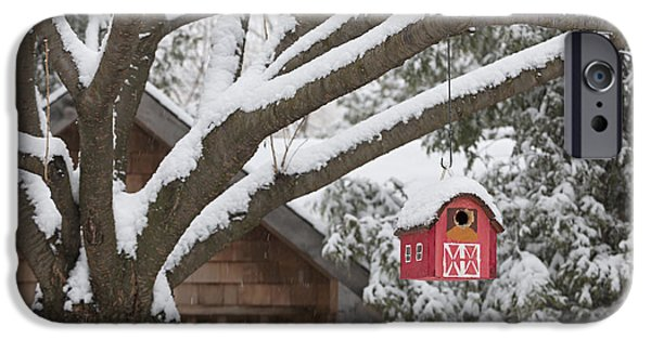 Birdhouse iPhone Cases - Red barn birdhouse on tree in winter iPhone Case by Elena Elisseeva