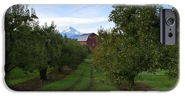 Pears iPhone Cases - Red Barn Mountain iPhone Case by Mike Dawson