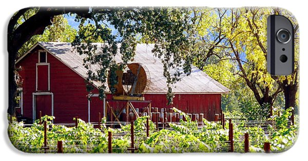 Rain Barrel iPhone Cases - Red Barn Oaks Vineyard iPhone Case by Jeff Lowe